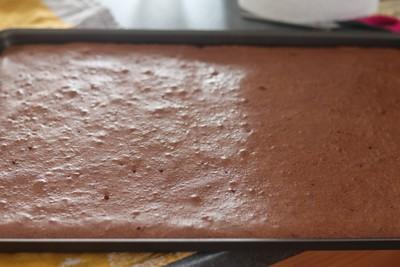 biscuit roulé chocolat au décor de girafe